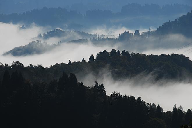scenery001.jpg